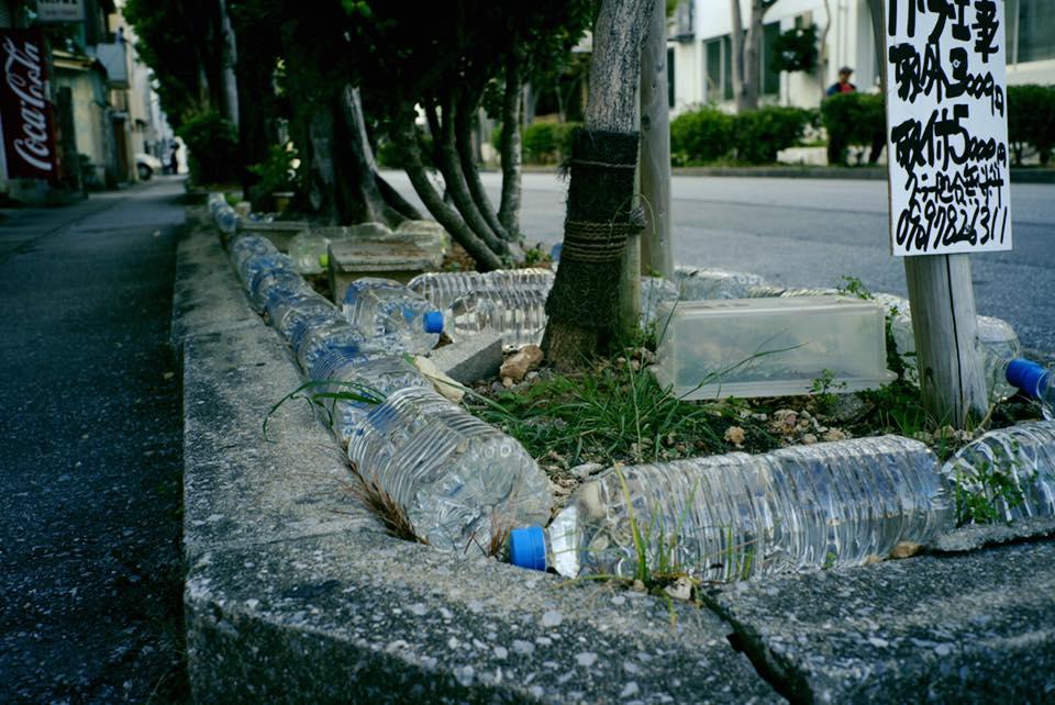 日本迷信寶特瓶驅貓術,一晃眼二十年卻是被騙了!