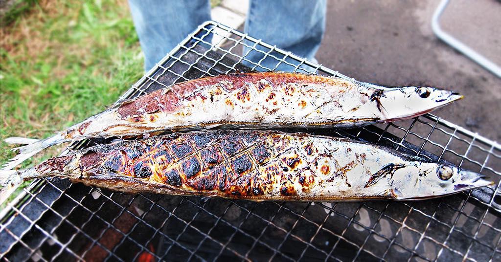 以為秋刀魚等於難吃?錯!(二)鹽烤秋刀密技