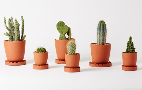 indoor-gardening-project-by-anderssen-and-voll-for-mjolk_b_dezeen_468_3