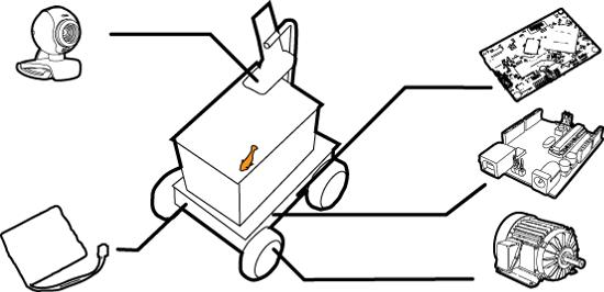 fish-diagram