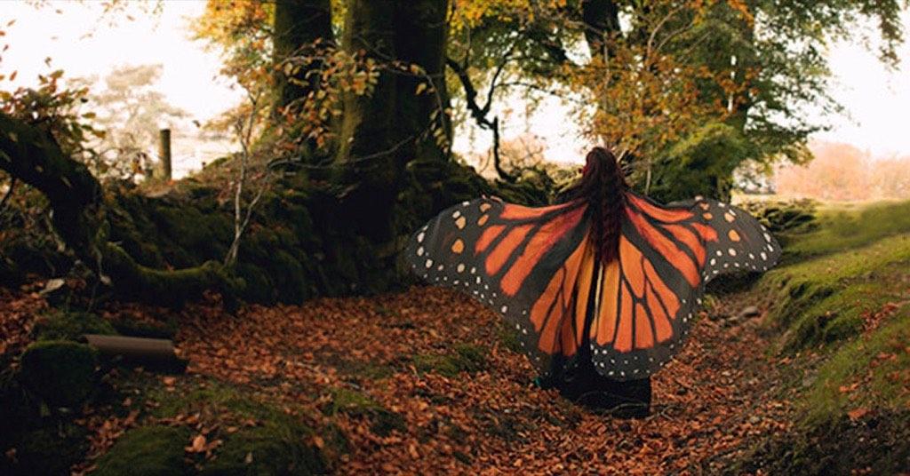 一秒 Cos 獵人 HunterXHunter 的普夫!既美麗又嚇人的「蝴蝶翅膀仿真披肩」