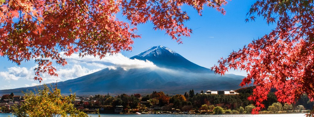 楓葉和富士山雙主角的經典取景