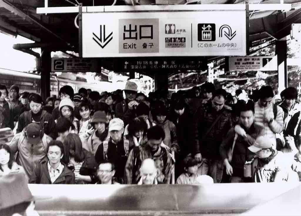 日本東京高尾山賞楓紀實,重要看點+攝影集懶人包(下)